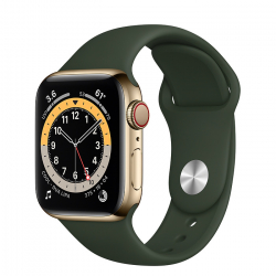 Часы Apple Watch Series 6 GPS + Cellular 40mm Gold Stainless Steel Case with Cyprus Green Sport Band