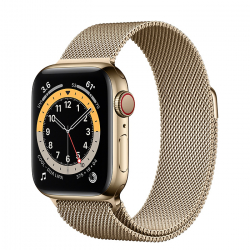 Часы Apple Watch Series 6 GPS + Cellular 40mm Gold Stainless Steel Case with Milanese Loop